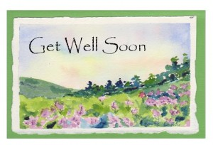Meadow Get Well